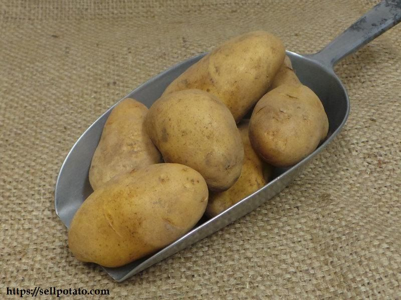 Fruit Potatoes