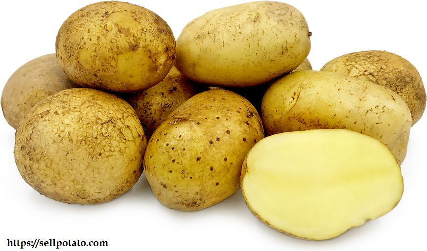 Buy exported potatoes from Iran