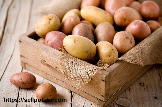 wooden boxes potato packaging