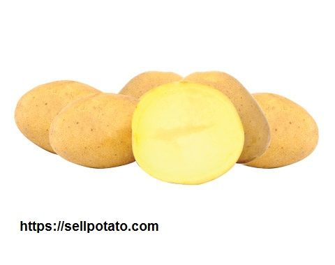 Buy exported potatoes in Iranian market