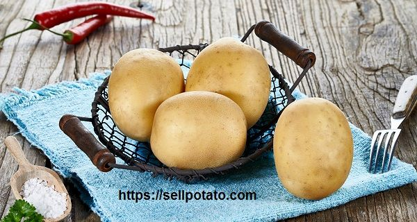 Photo of Potato export | how can I success in potato exporting